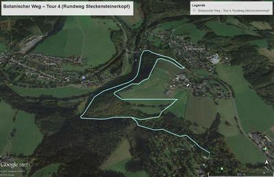 Botanischer Weg - Tour 4 (Rundweg Steckensteinerkopf)