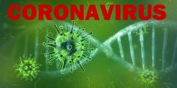 Startbox Coronavirus